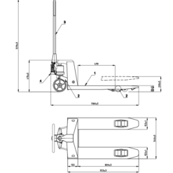 asso800-shema-izmeri-rasejums.png